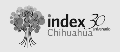 Avances Edificio Index Julio 2017