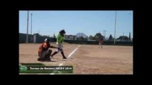 Torneo de Béisbol Index 2014
