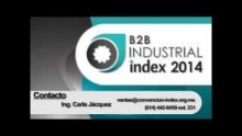 B2B Industrial Index 2014